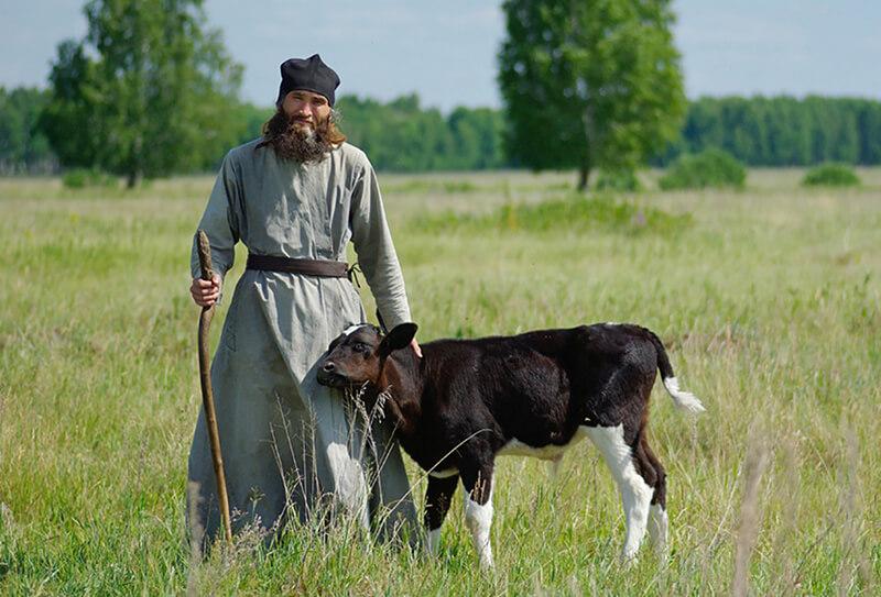 монах и теленок
