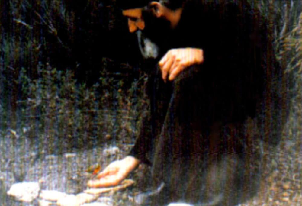 Преподобный старец Паисий Святогорец и птичка, фото