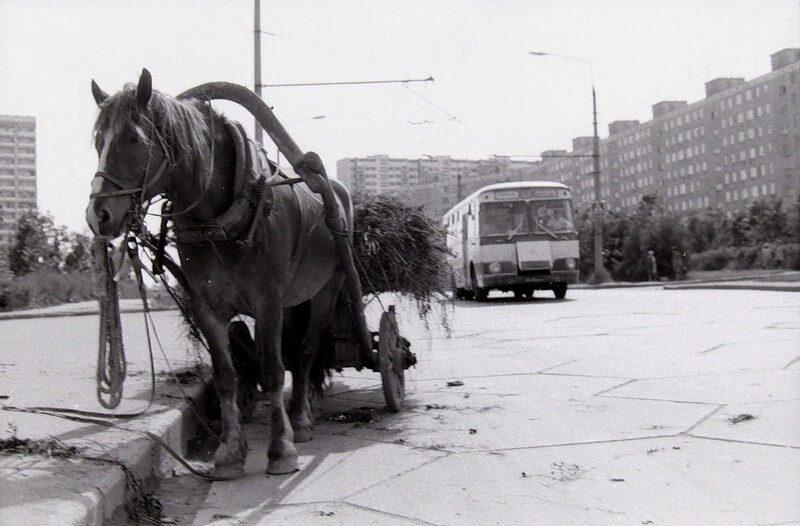 тропарево москва 70-е