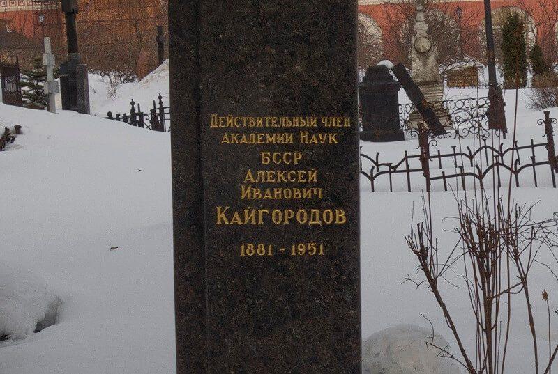 Донской монастырь могила академика Кайгородова